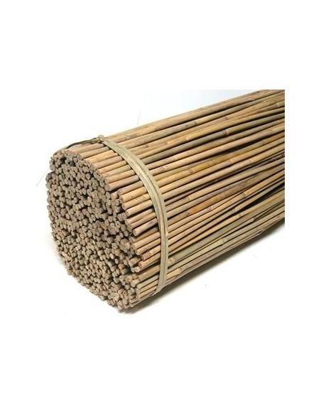 Tuteurs en bambou *10