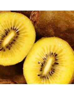 Kiwi jaune Golden kiwi