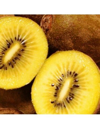 Kiwai jaune Golden kiwi